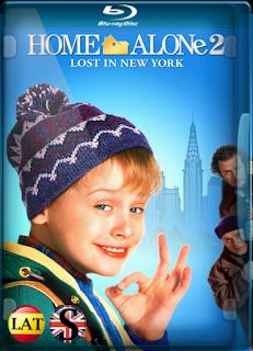 Mi Pobre Angelito 2: Perdido en Nueva York (1992) REMUX 1080P LATINO/ESPAÑOL/INGLES