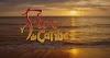 Resumo Flor do Caribe: episódios da novela de 26/10 a 07/11/2020