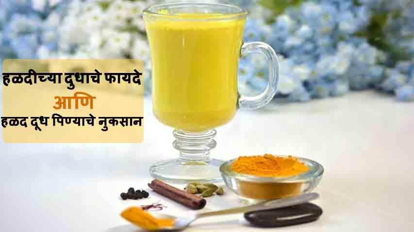 Haldichya Dudhache Fayde Ani Nuksan Marathi