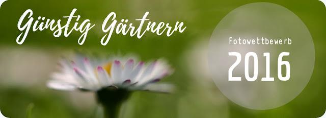 http://guenstiggaertnern.blogspot.de/2016/10/fotowettbewerb-gunstig-gartnern-2016.html