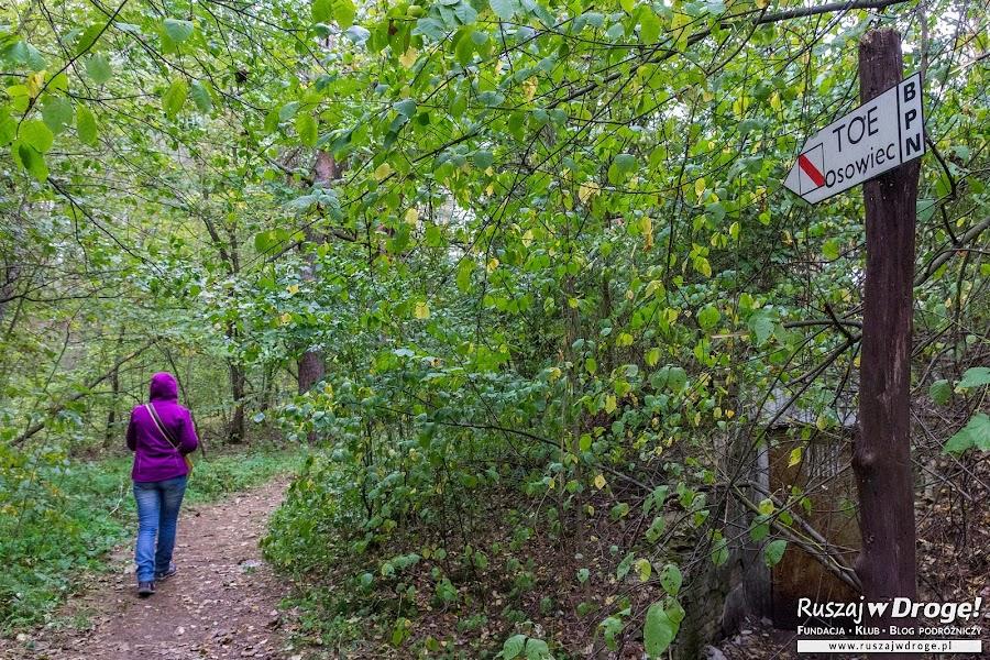 Ścieżka edukacyjna w Osowcu-Twierdzy