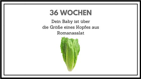 36 Wochen schwanger