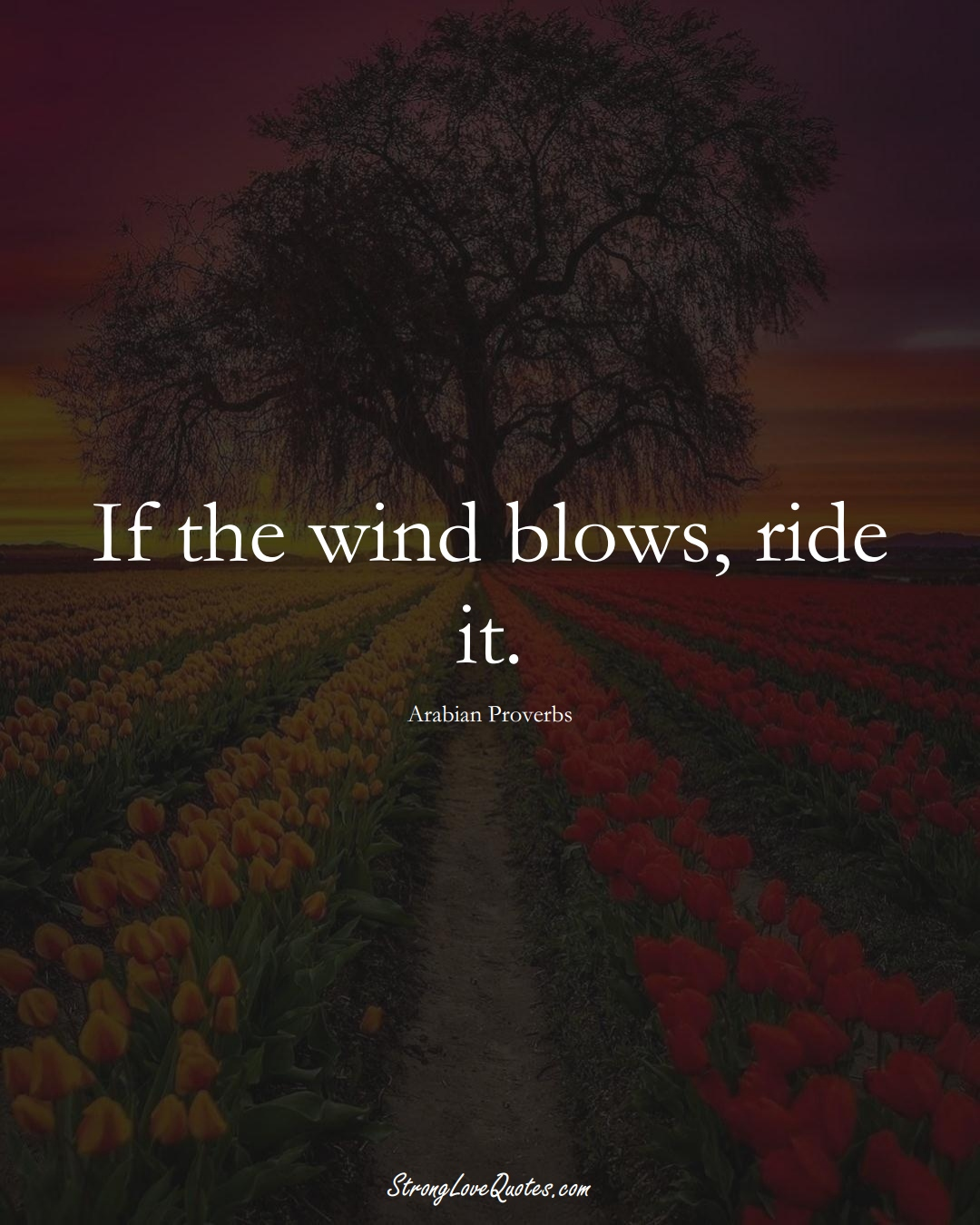 If the wind blows, ride it. (Arabian Sayings);  #aVarietyofCulturesSayings