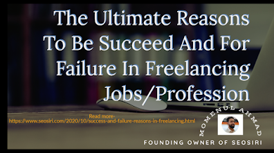 Reasons for success and failure in freelancing jobs/professions