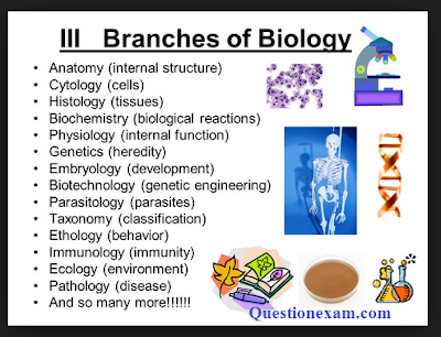 25 branches of biology हिन्दी