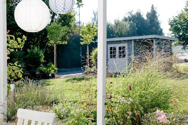 Kugelplatanen, Gartenimpressionen