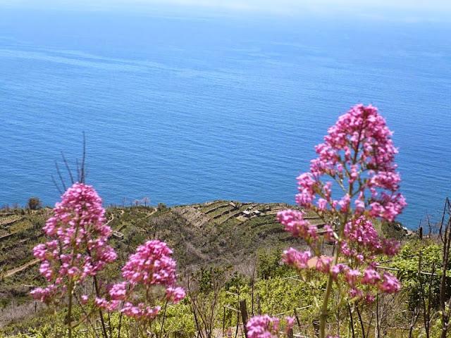 panorama sentiero riomaggiore portovenere
