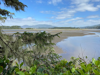 Sitka Sedge Natural Area - View of Sand Lake.