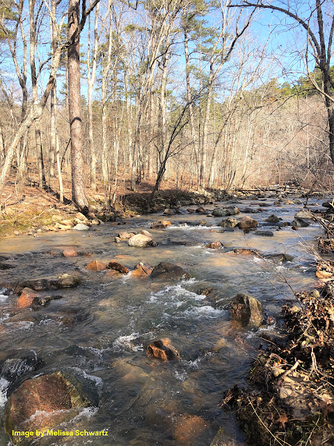 Pickle Creek rushes over boulders creating a remarkable landscape.