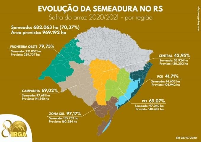 Região da Campanha atinge quase 70% da área de arroz semeada