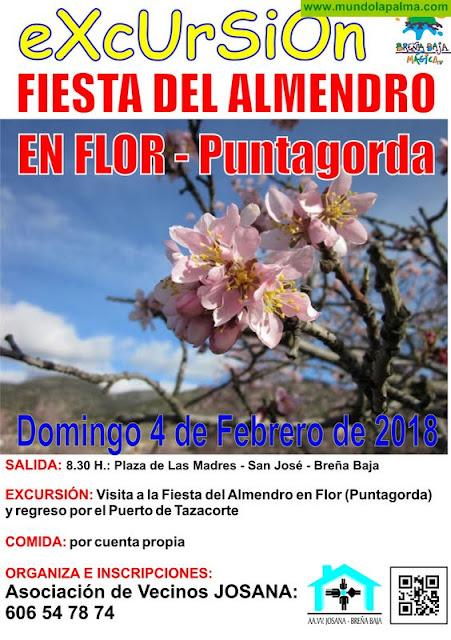 BREÑA BAJA: excursiones a la Fiesta del Almendro en Flor