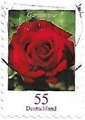 Selo rosa vermelha