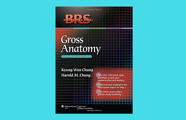 Download BRS Gross Anatomy 7th Edition PDF for free