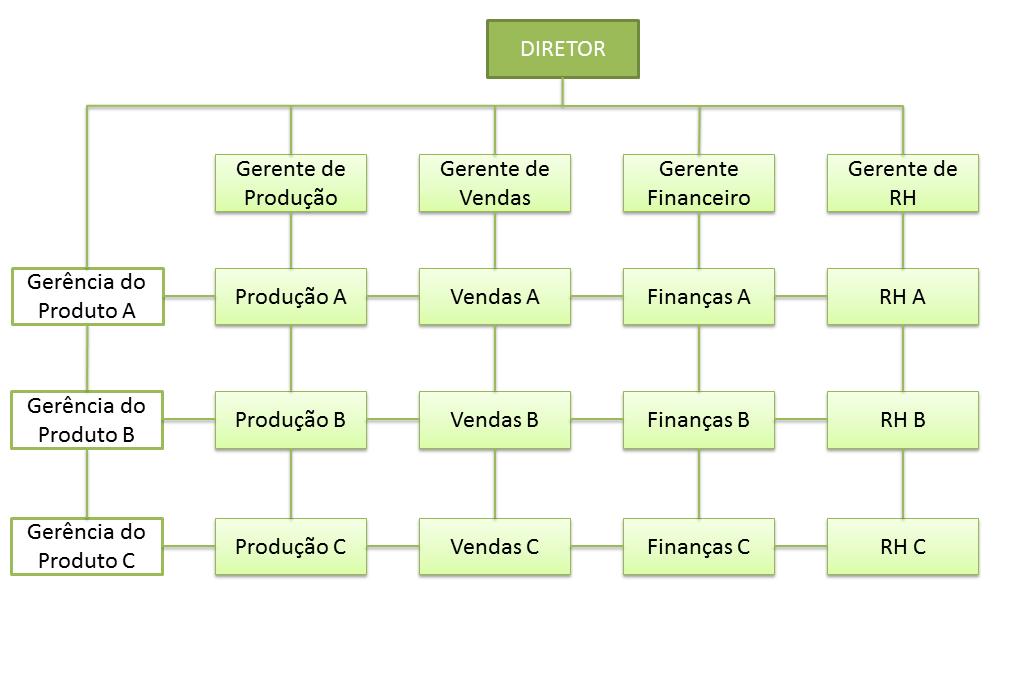 Resultado de imagem para estrutura organizacional matricial