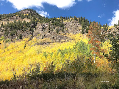 Rocky Mountains, yellow and red trees