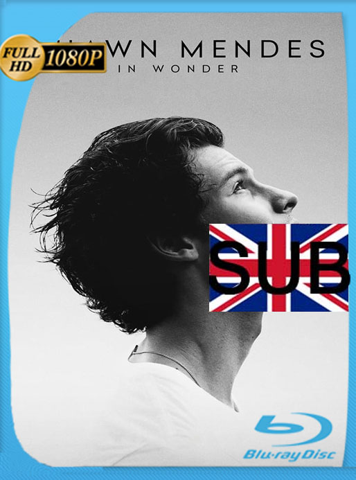 Shawn Mendes: In Wonder (2020) 1080p WEB-DL  Subtitulado  [GoogleDrive] [tomyly]