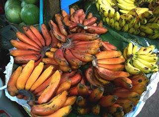 pisang merah, pisang genderuwo, pisang, red banana