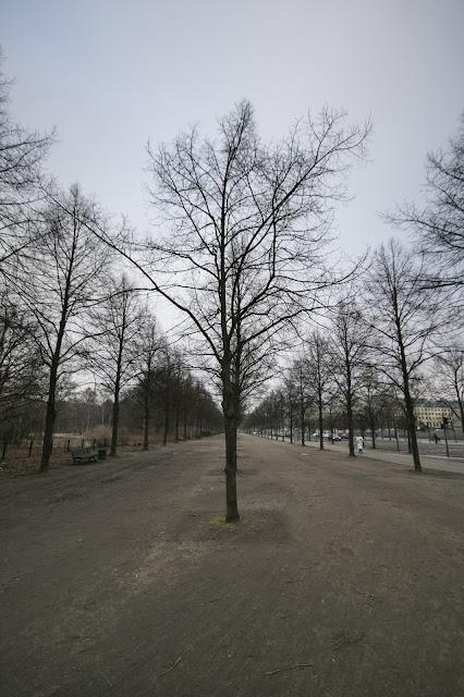 Parco verso l'Holocaust Mahnmal-Berlino