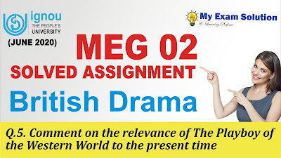the playboy of the western world, ignou assigment, ignou free assignment 2020
