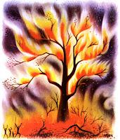 http://1.bp.blogspot.com/-4r35ALL3-Ow/UjPSY6KGZEI/AAAAAAAAAJk/uVQgXRB9VO0/s200/fire-tree.jpg
