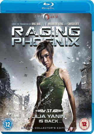 Raging Phoenix 2009 BluRay 1GB Hindi Dual Audio 720p Watch Online Full Movie Download bolly4u