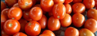 Cara Mudah Membuat Saus Tomat