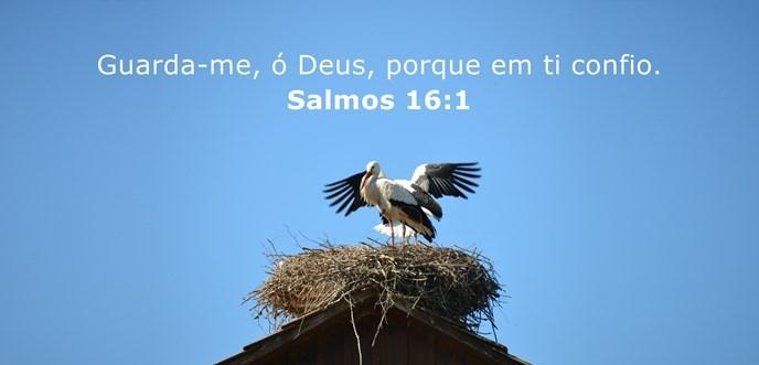 Guarda-me, ó Deus, porque em ti confio.
