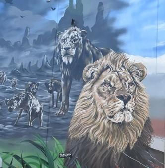 Greenacre Street Art   Reubszz