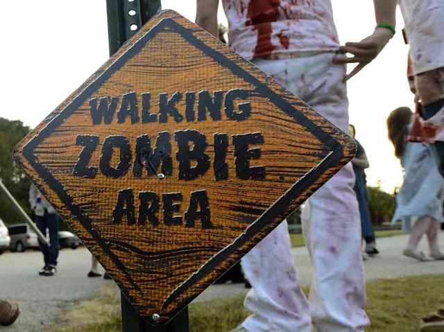 Hacker broadcasts zombie warning on TV