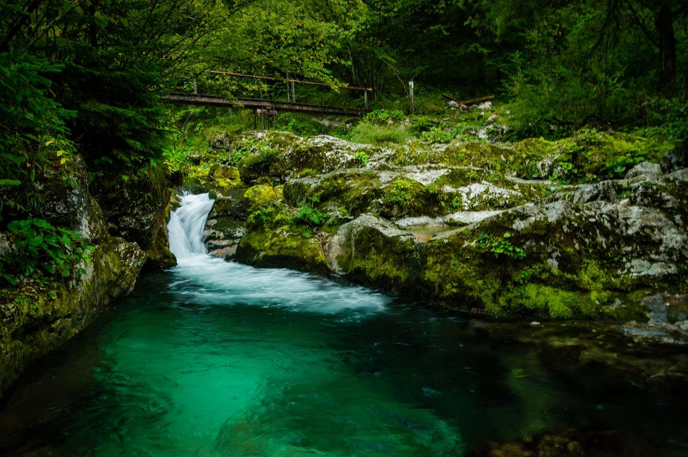 Šunikov vodni gaj Słowenia Dolina Lepena