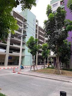 ขายด่วน ลุมพินี คอนโดทาวน์ ชลบุรี-สุขุมวิท เนื้อที่ห้อง 24.64 เนื้อที่ระเบียง 1.96 ตรม 1 ห้องนอน 1 ห้องน้ำ สนใจติดต่อ 0972468779