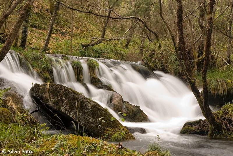 Cascada en río Sesín