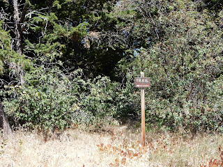 Trail sign with an arrow on it