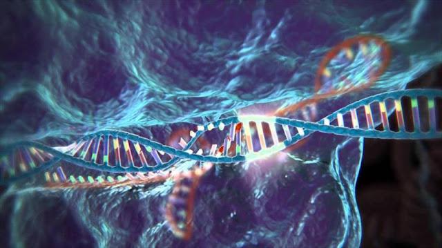 Científicos identifican un gen que puede tratar el cáncer