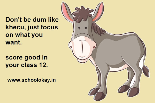 Tips for class class 12 board exams 2020-21