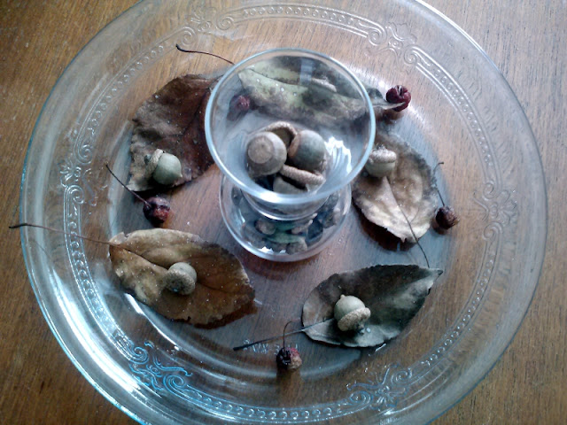 Acorns, leaves, berries, displayed for Autumn decoration on MWP