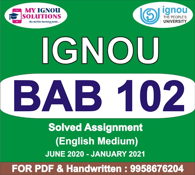 BAB 102 Solved Assignment 2020-21