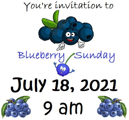 Blueberry Sunday