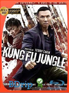 Kung Fu Jungle (2014) BDRIP1080pLatino [GoogleDrive] SilvestreHD