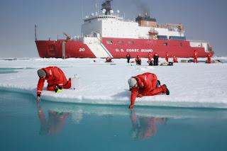 Βρήκαν δάση φυτοπλαγκτόν κάτω από τους πάγους της Αρκτικής !