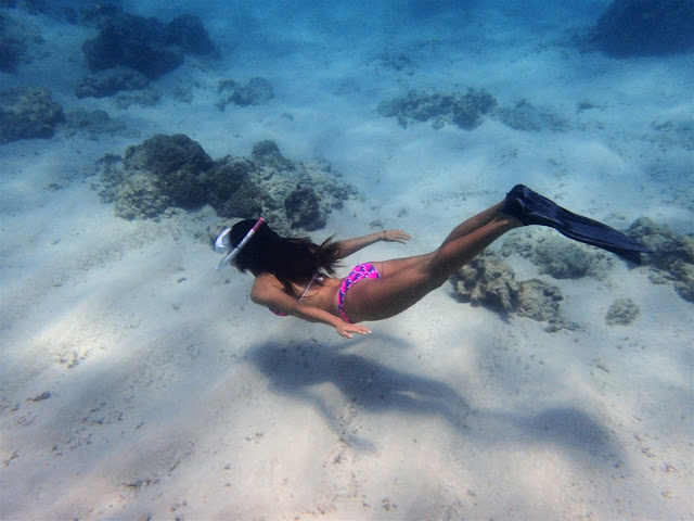 バリ島発、ギリ3島シュノーケリング専門ツアー、ポイントマップ