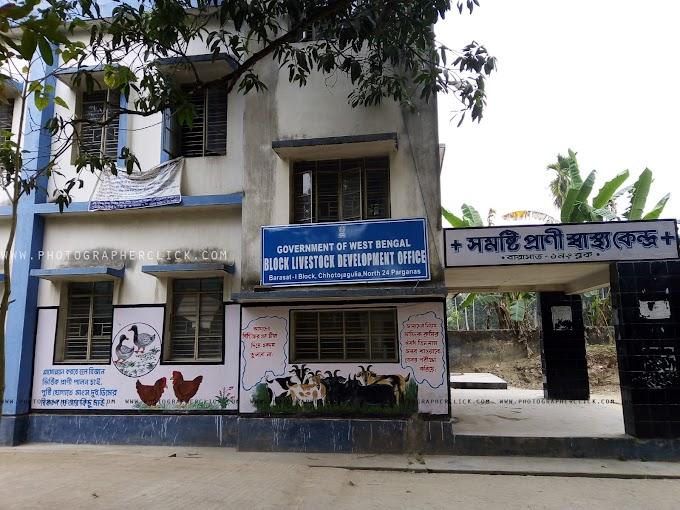 Block Livestock Development Office Barasat I Development Block Chhoto Jagulia North 24-parganas