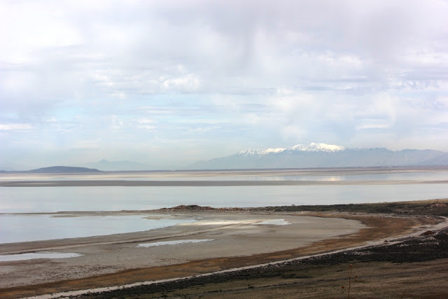 Bridger Bay on Antelope Island looking off to the Wasatch Mountains