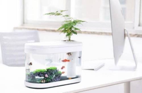 Xiaomi Rilis Aquarium Cantik Portable