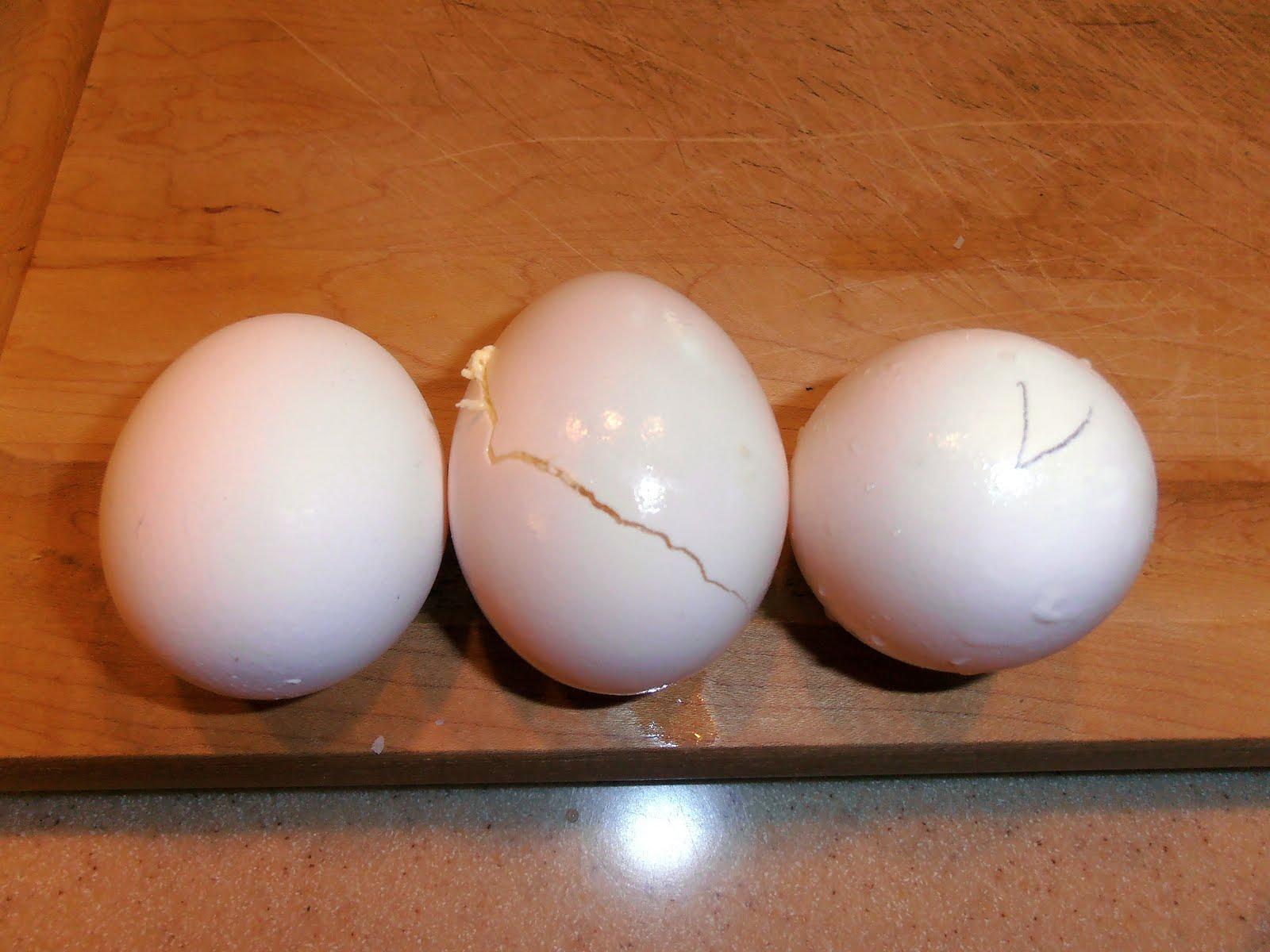 Goode Eates Egg Preservation Month One
