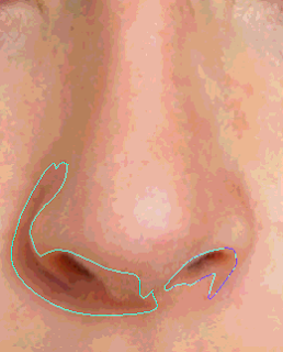 How to Make a nose image vector using Photoshop