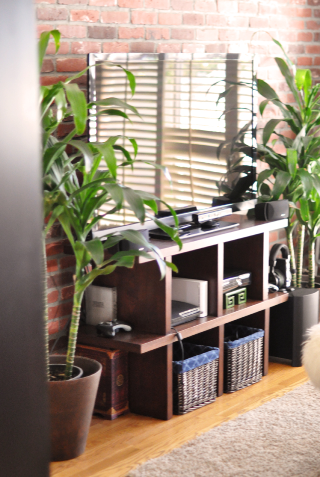 large flat screen tv and plants