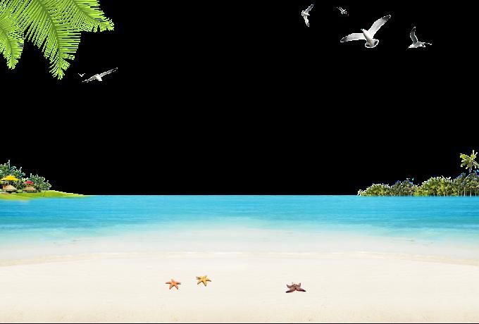 Sandy Beach Ocean Beach, Seaside beach, flying birds above the body of water, beach, computer png by: pngkh.com