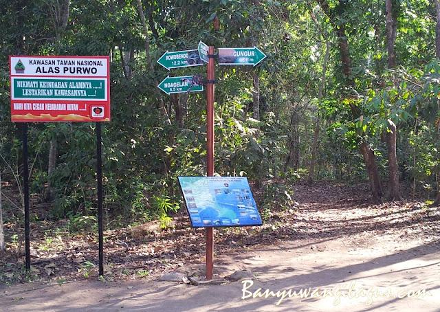 Pos Bedul di Taman Nasional Alas Purwo.
