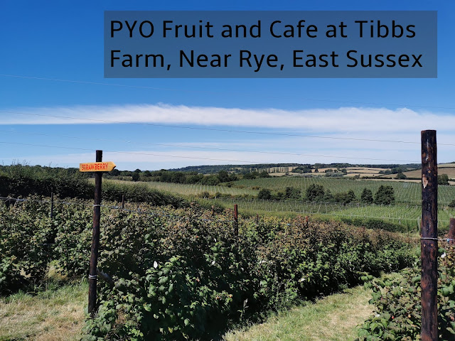 Tibbs Farm is a pick your own soft fruit farm near Rye in East Sussex. It has a wonderful cafe too serving homemade delights